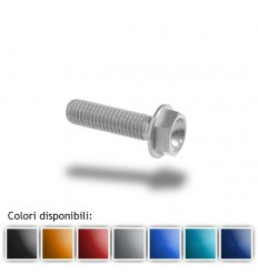 Bullone in ergal 004 testa esagonale 6x30mm