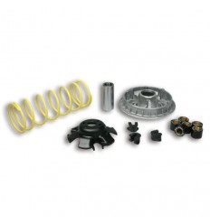 Kit Multivar 2000 Malossi Kymco People 250, Grand Dink 250...
