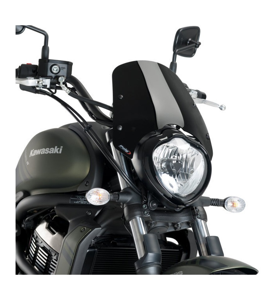 Windshield Naked New Generation Sport for motorcycle